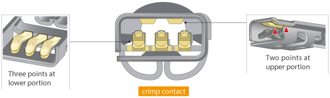 Multi-point contact structure  -Secure contact and superior vibration resistance-