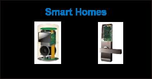 Smart Homes: Smart Speaker, Smart Lock
